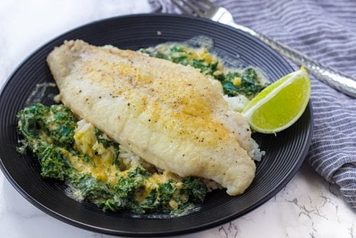 blue-apron_catfish