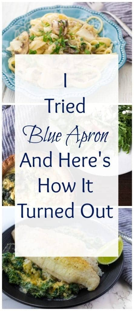 Here's my honest review of Blue Apron Meal Delivery Service. I've it and here's how it turned out.