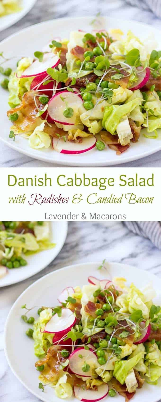 Learn how to make a delicious Danish Cabbage Salad with Radishes and Candied Bacon. Cooking Scandinavian Recipes has never been easier.