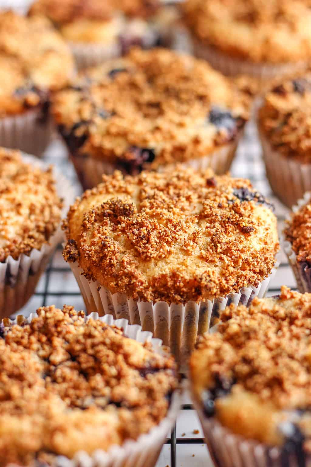 Vegan Blueberry Muffins with streusel topping