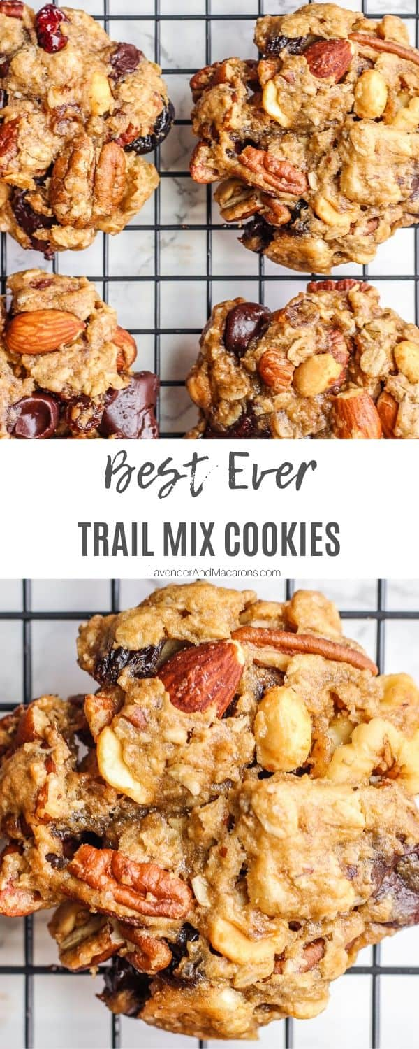 Best Ever Trail Mix cookie Pinterest image