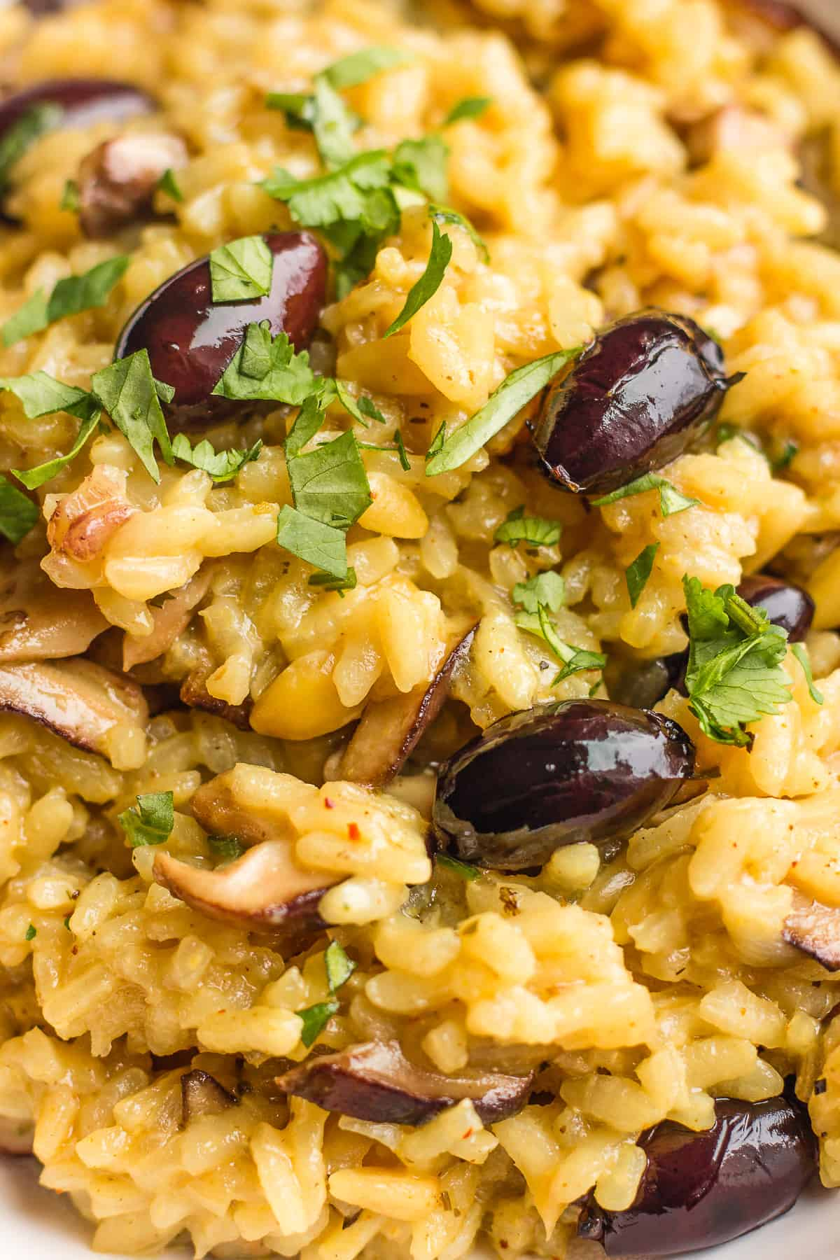 Upclose shot of Italian risotto with mushrooms, olives and pine nuts