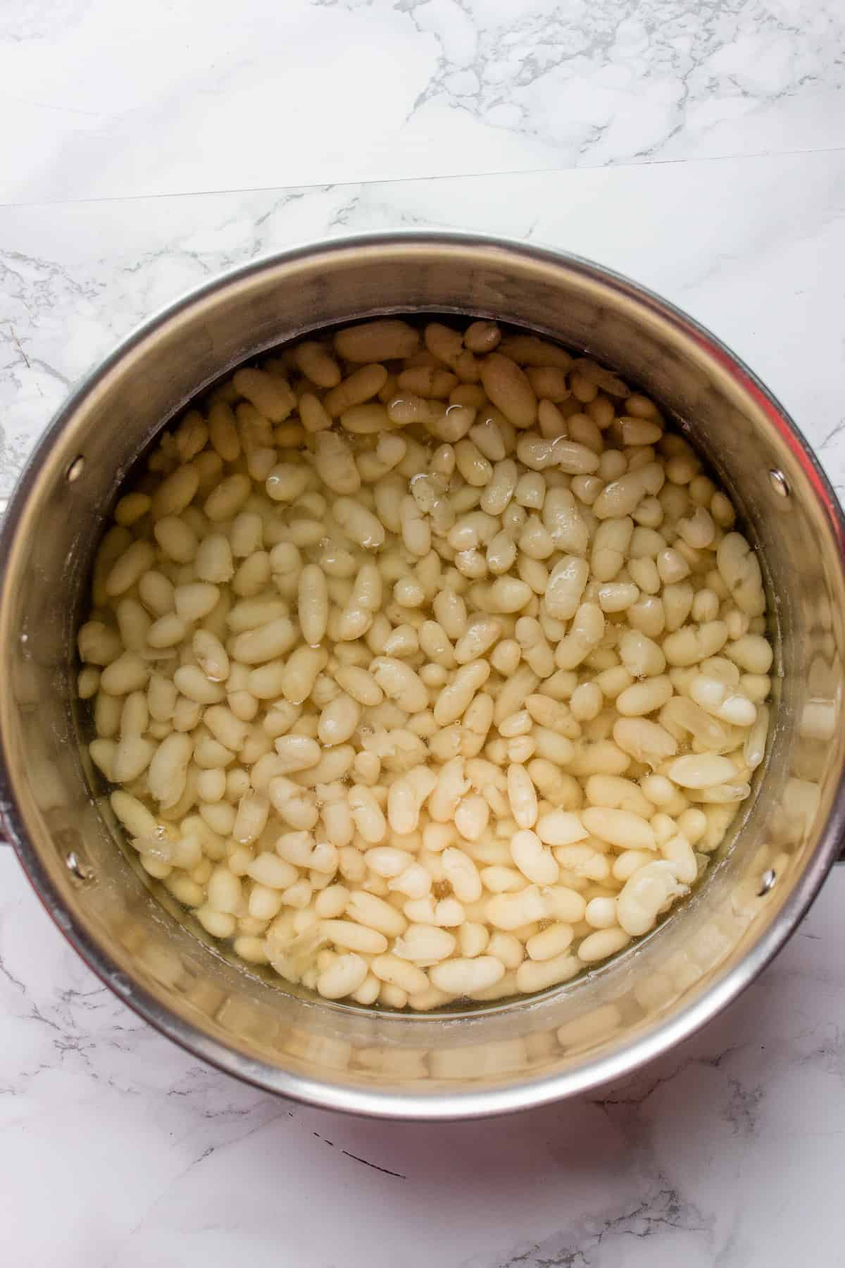 A pot filled with cooked white beans on a white background