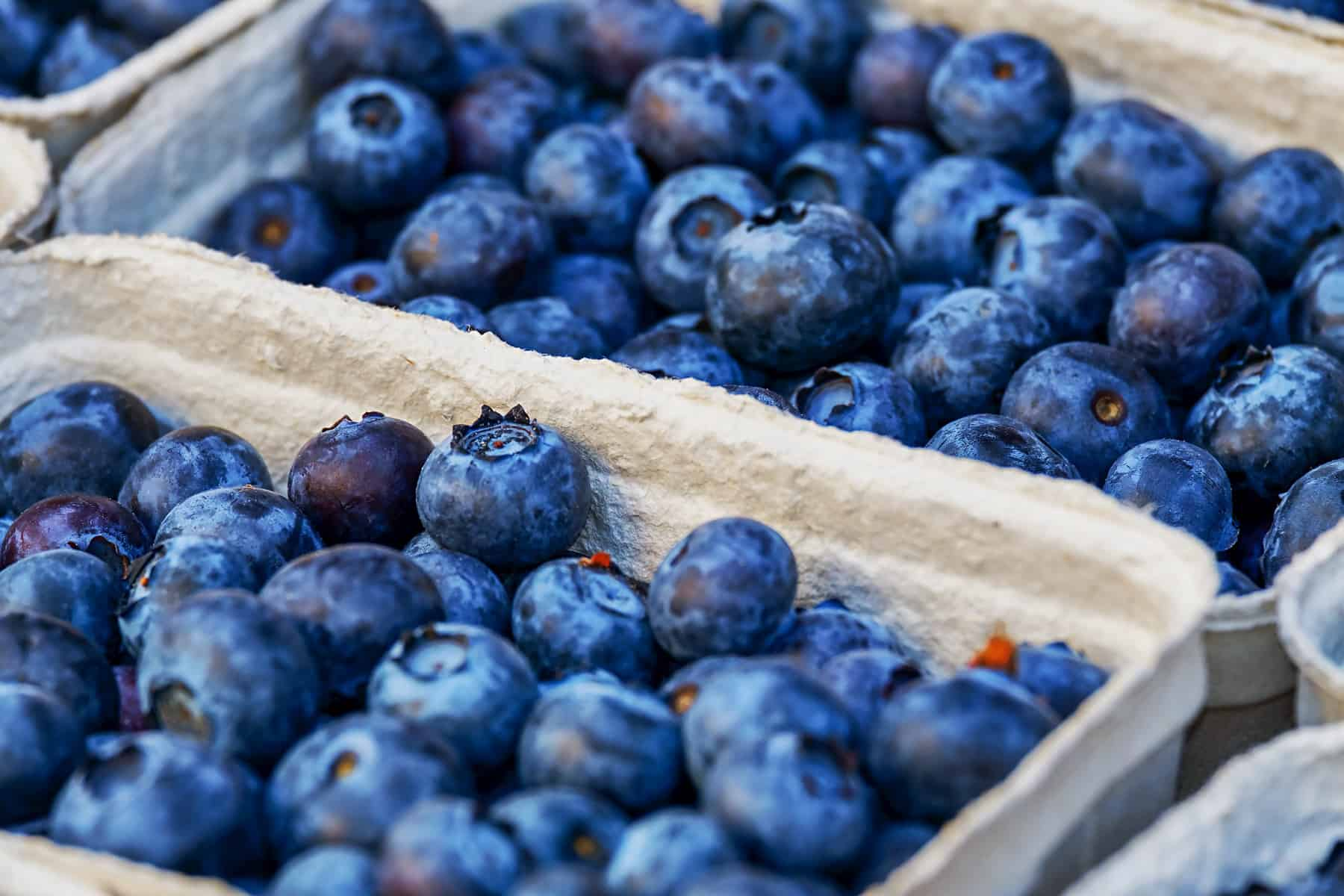 Blueberries in paper cartons